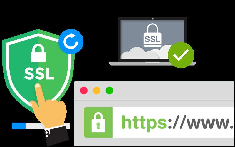 Certificado SSL | Treebes